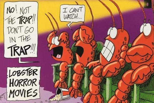 😂😂😂#lobsterbake #lobsters #lobsterhumor #newengland #laughfortheday
