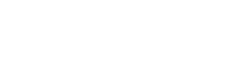 fia-gt-nations-cup-logo-wht.png