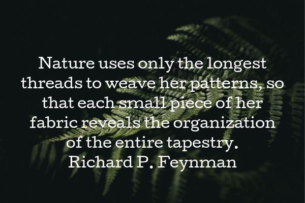 longest threads - feynman (1).jpg