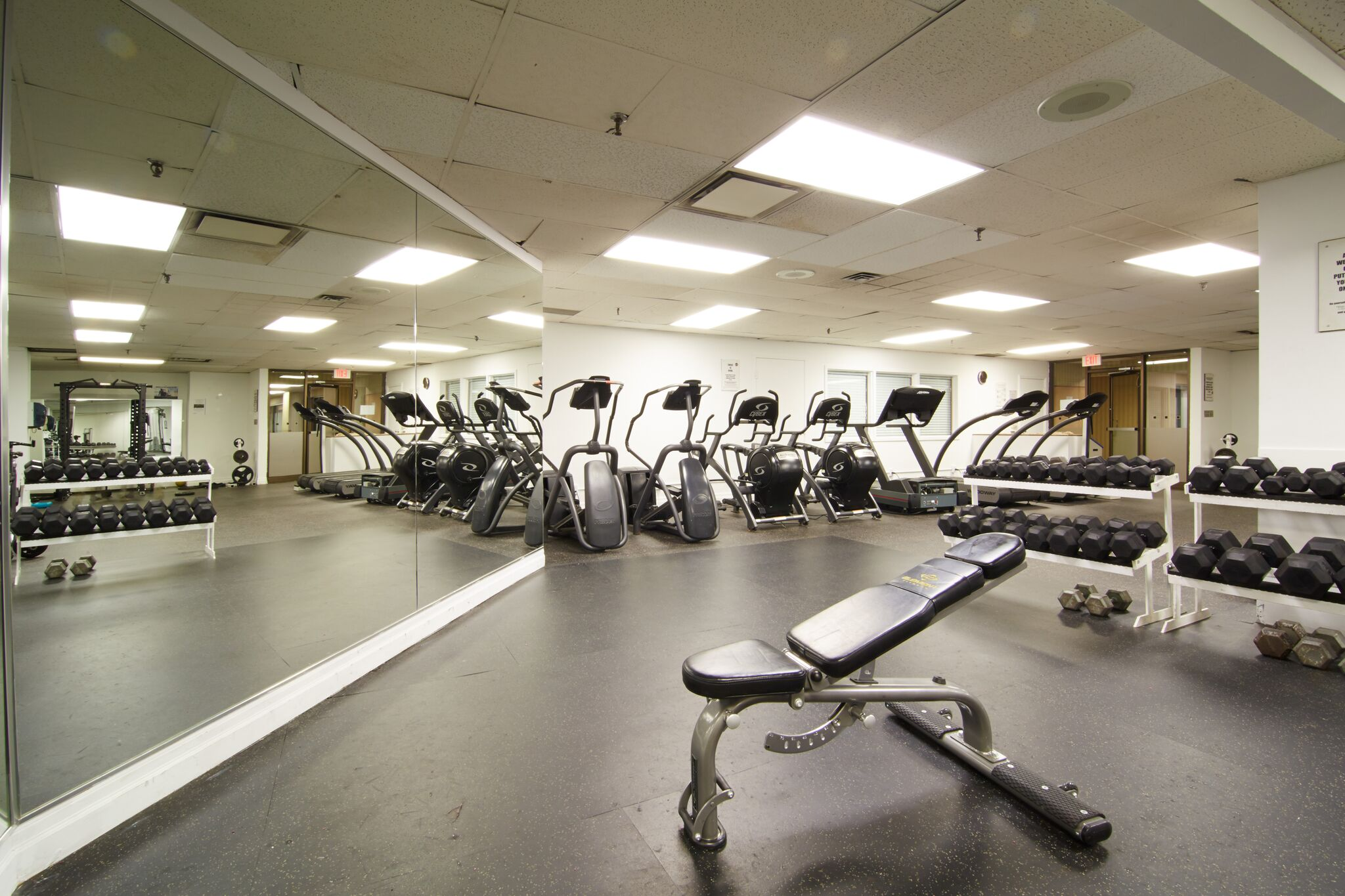 Gym01.jpeg