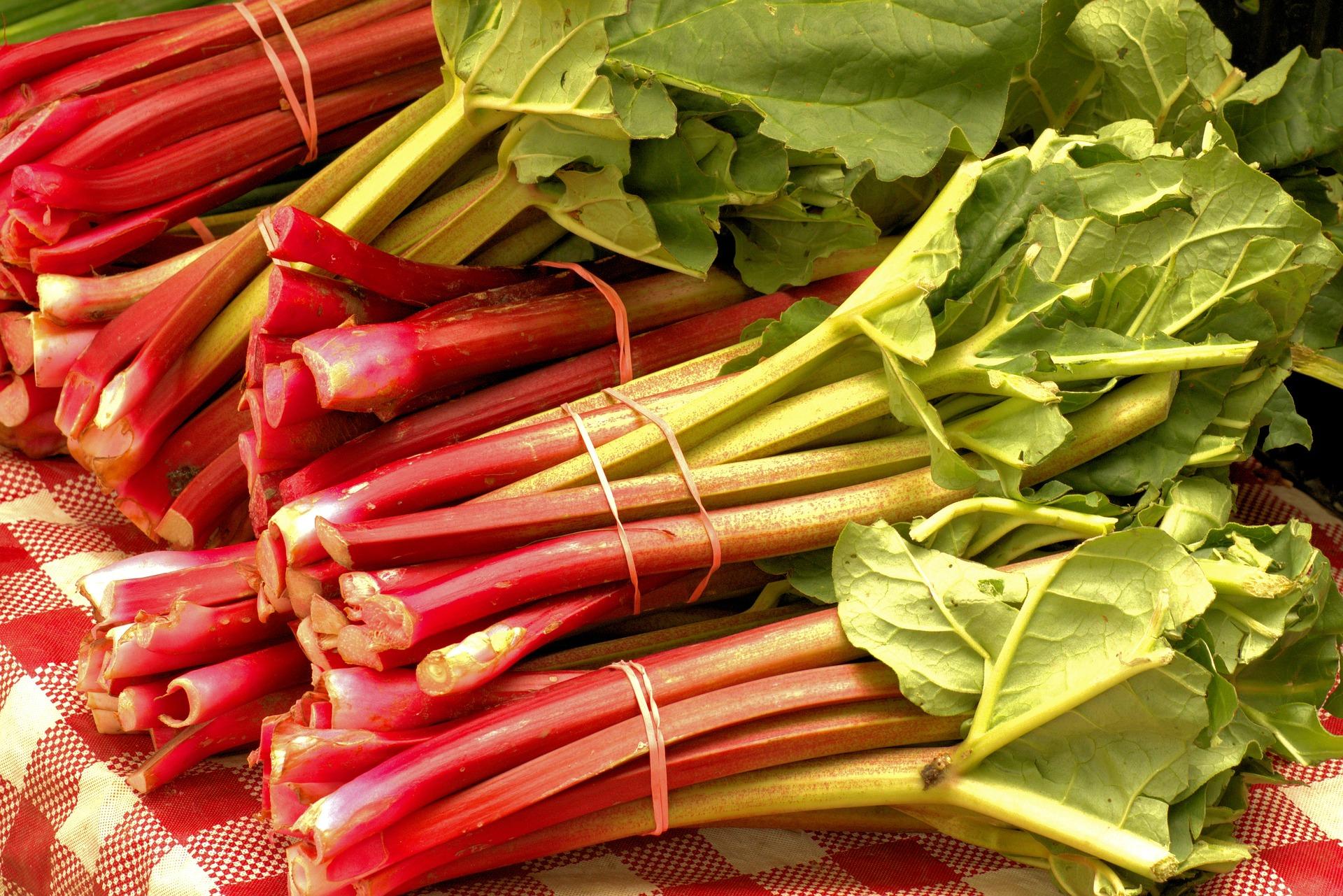 market-fresh-rhubarb-3503166_1920.jpg