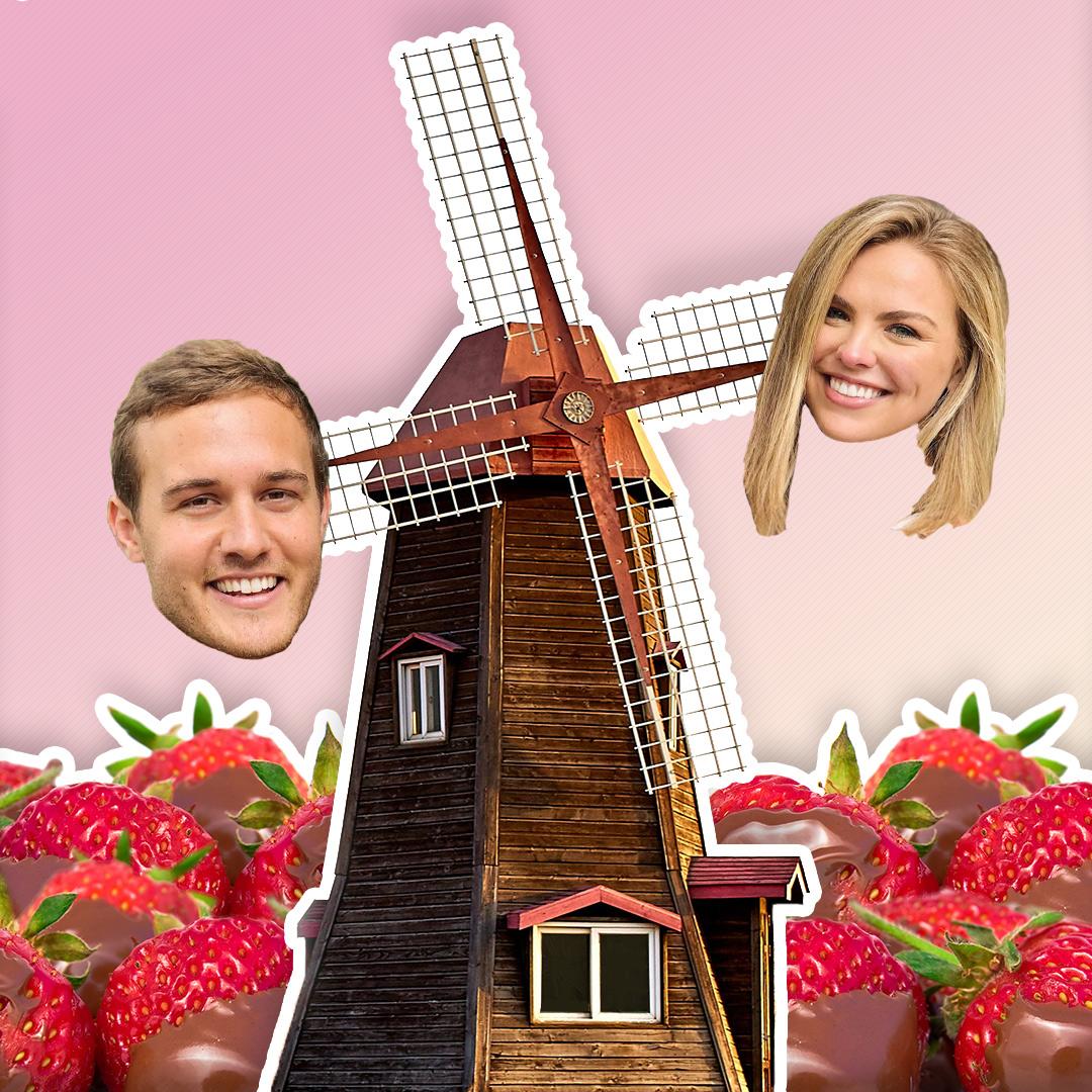 hannah-peter-windmill-strawberries.jpg