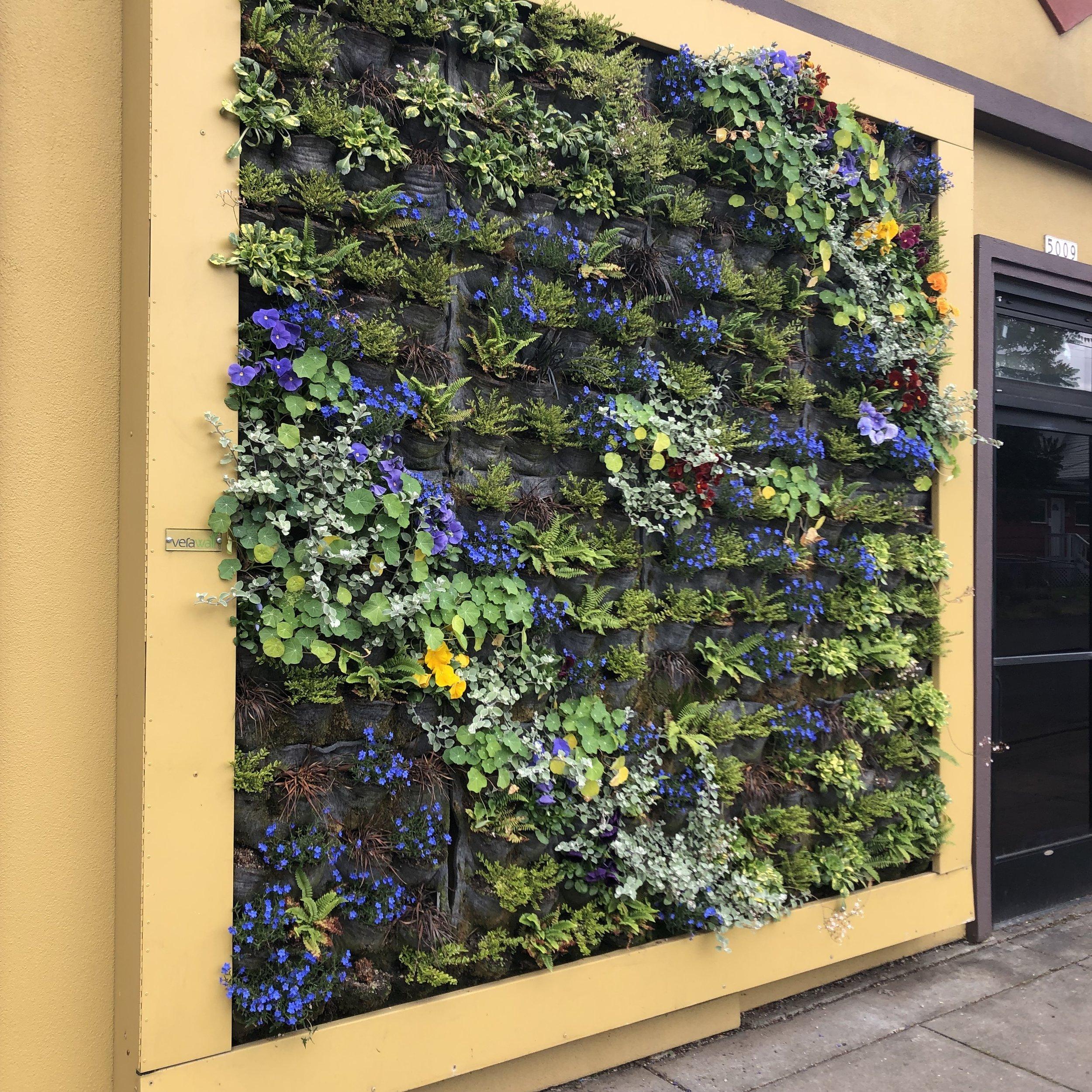 PDX green wall.jpg