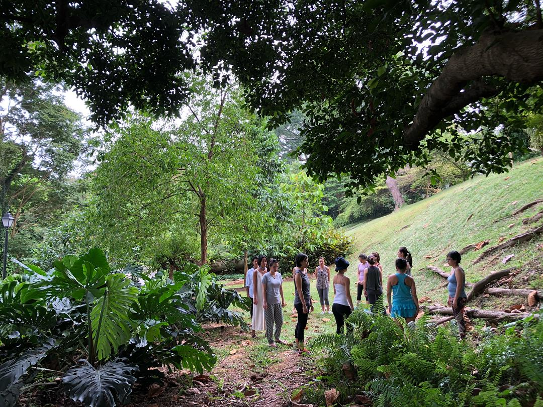 Forest bathing, forest therapy, shinrin yoku, singapore