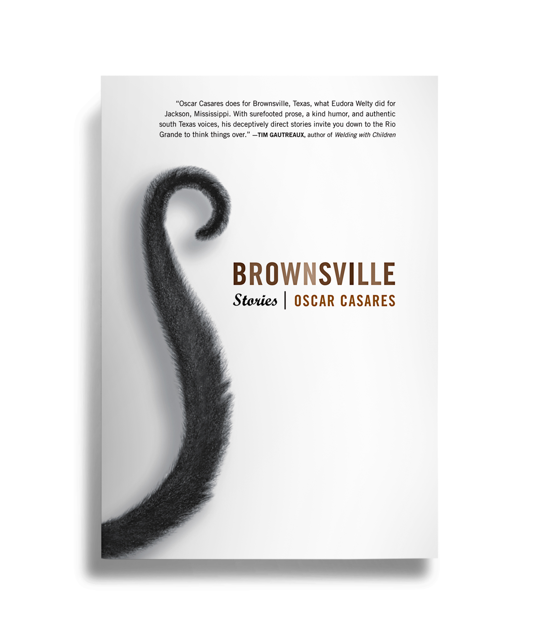 Brownsville: Stories , by Oscar Casares