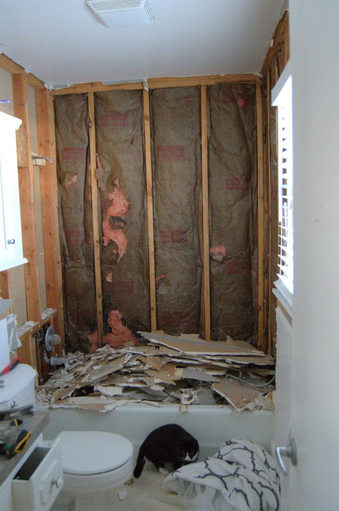 Bathroom-Renovation-Jeffrey-Court-Always-Never-Done.-6-02.jpg