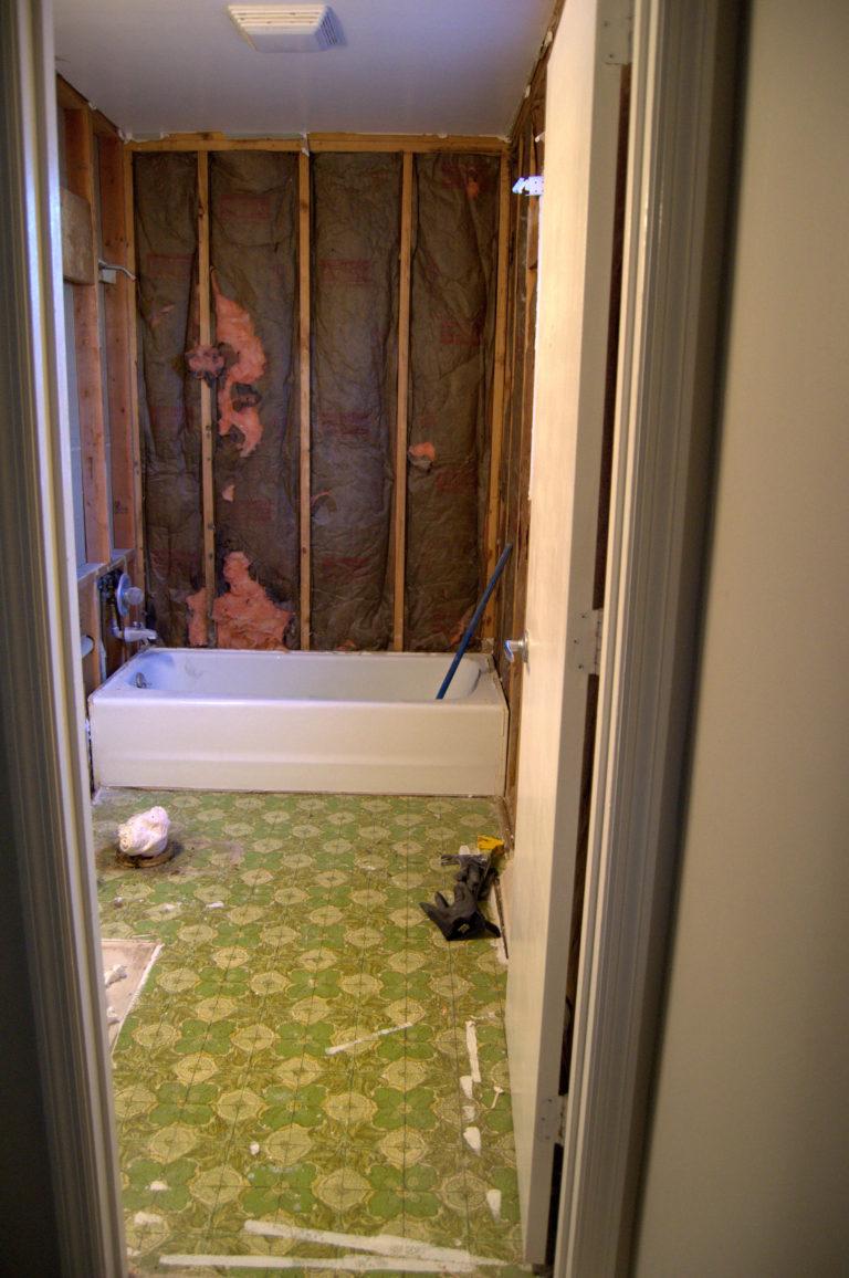 Bathroom-Renovation-Jeffrey-Court-Always-Never-Done-week-2-04.jpg