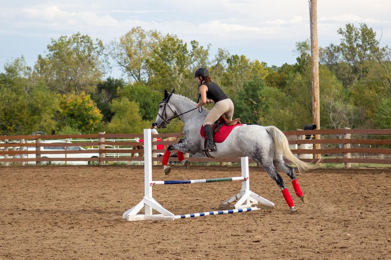 equestrial-riding-arena-01.jpg