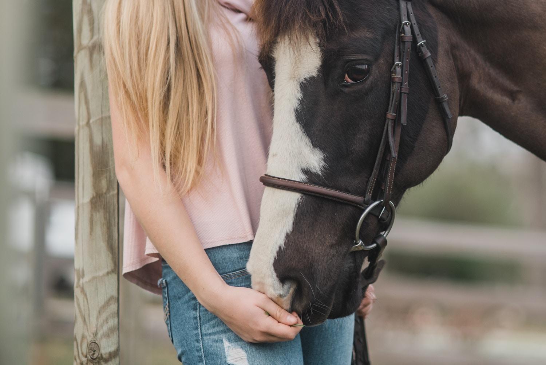equestrian-riding-arena-02.jpg
