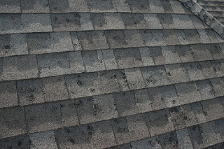 Roof Repair - Click below to get more information about our roof repair program.