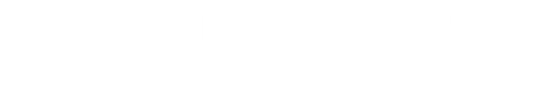 PARTNERS (1).png