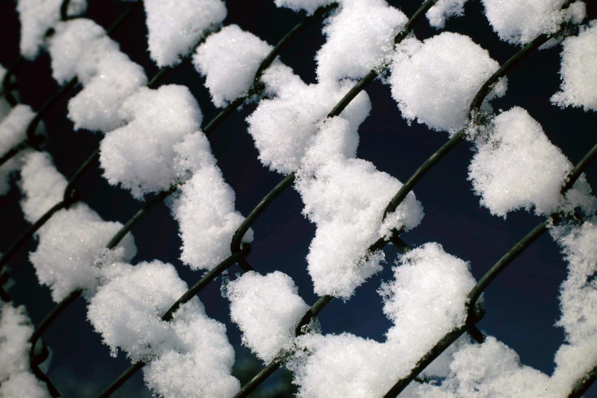 Winter 1 - 0038.jpg