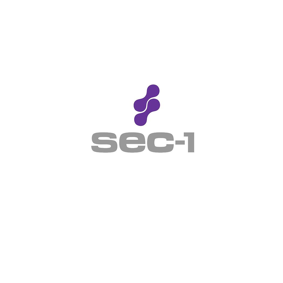 sec-1.png