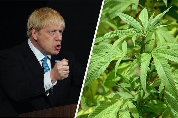 "Boris Johnson has appointed two supporters of cannabis decriminalisation to his top team in Downing Street. Blair Gibbs, who leads policy at the Centre for Medicinal Cannabis, an industry group, has been hired as an adviser to Mr Johnson.⠀ ⠀ Mr Gibbs supports the legalisation of cannabis and tweeted last month: ""When the UK gets round to legislating to regulate a legal market for recreational cannabis it will need to learn from other models but also devise one that fits its own culture and institutions best."" He told The Times last year: ""Prohibition is no longer seen as the smart and responsible policy.""⠀ ⠀ http://bit.ly/2MFD5tE⠀ ⠀ #cannabispodcast #entrepreneurship #medicalcannabis #wellness #cannabisscience #cannabisresearch #cannabis #CBD #cbdoil #cbdbusiness #CBDUK #hemp #cannabiscures #cannabissociety #cannabisindustry #cannabiseducation #cannabisconversation #mediaandcannabis #drugsnews#cannabisnews #CBD #THC #medicine #podcast #medical claims #medicalmarketing #cbdmarketing #medicinal #medicalproduct"