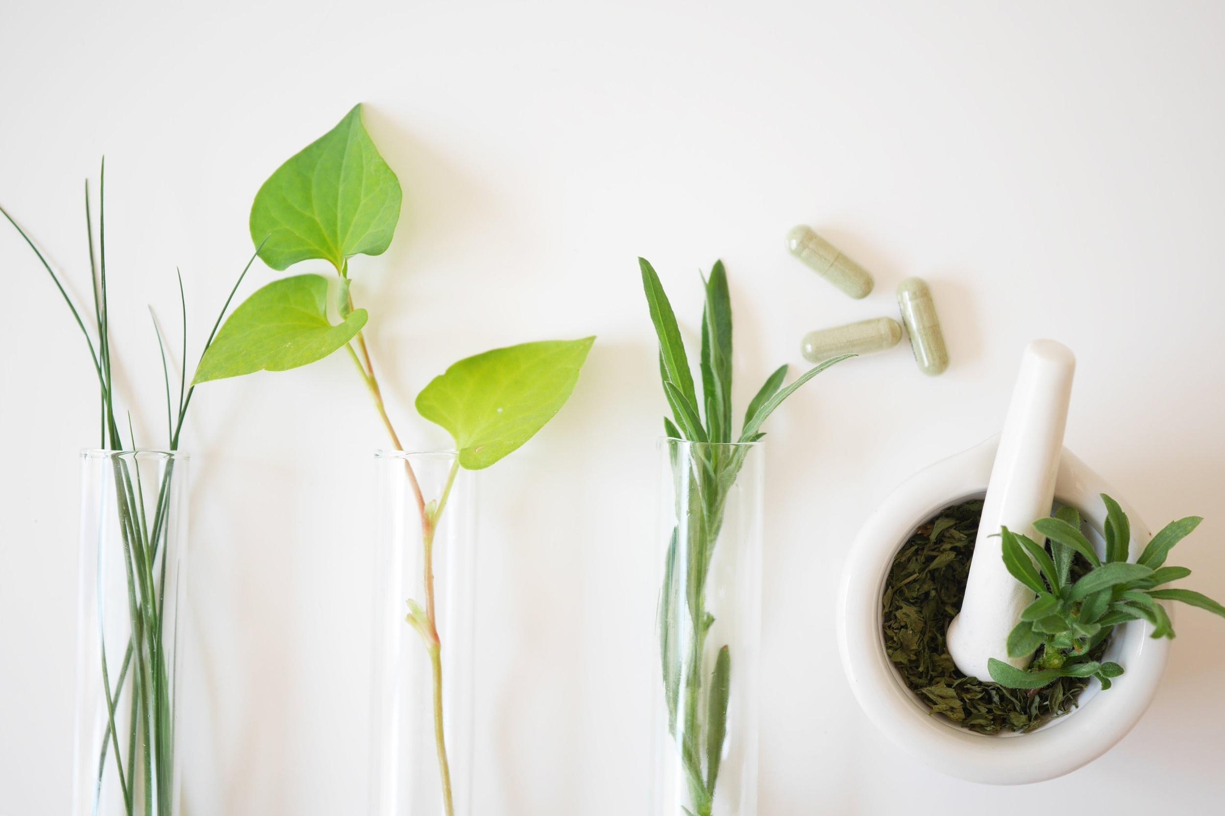Herbal Medicine Consultation -