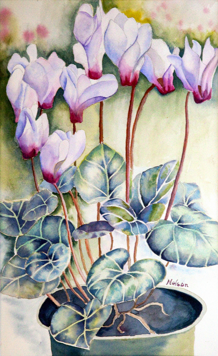 CYCLAMEN, Watercolor on Arches