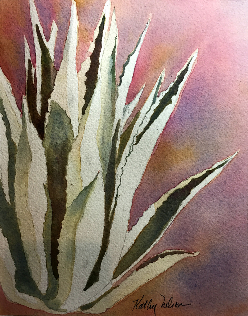AGAVE, Watercolor on Arches