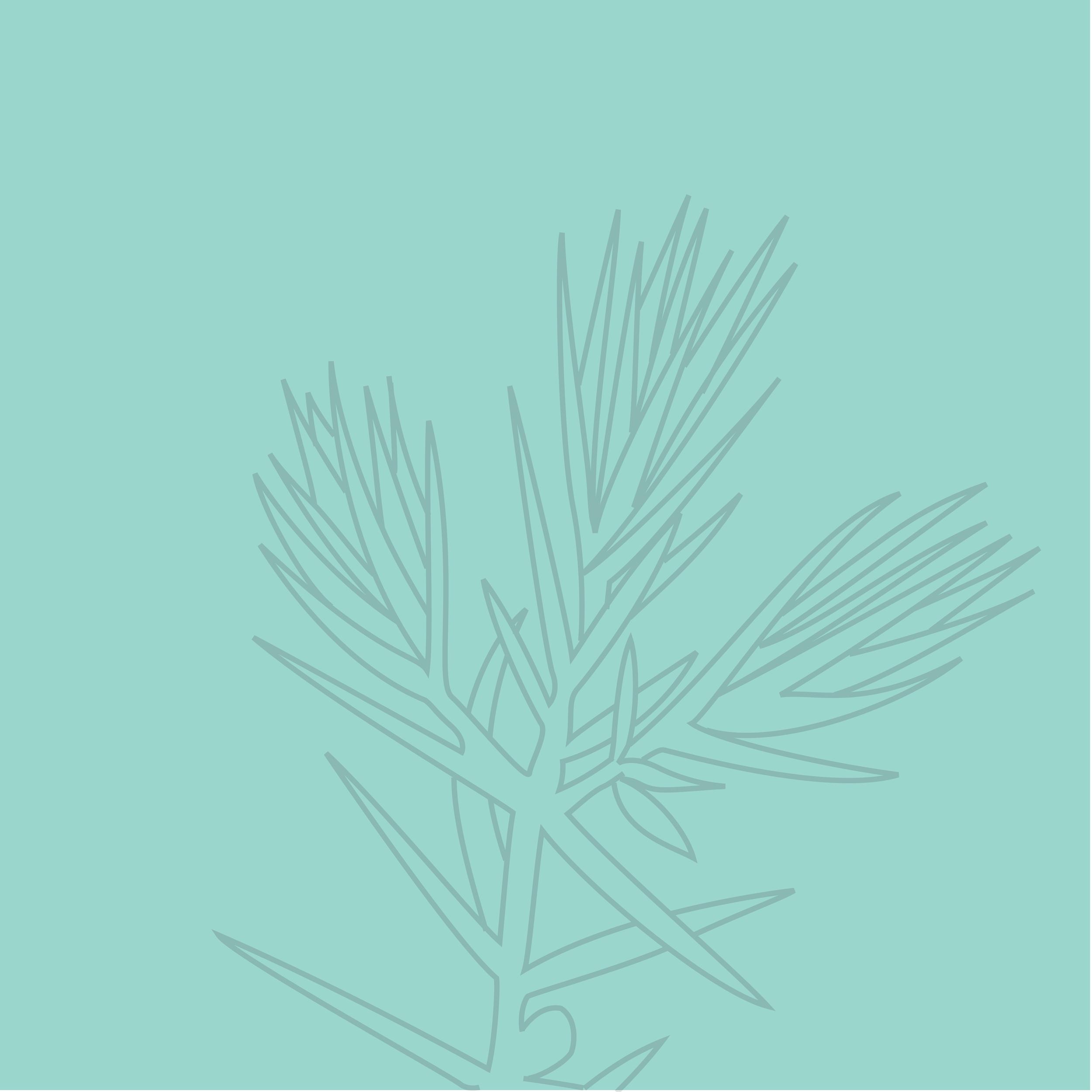 Ampersand-Brand-Details-07.png