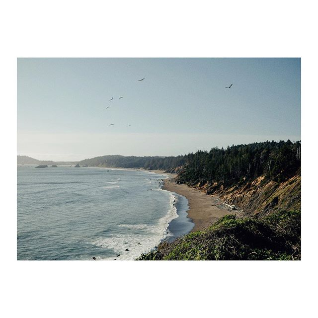 snapshot from the Oregon coast. May 2019.