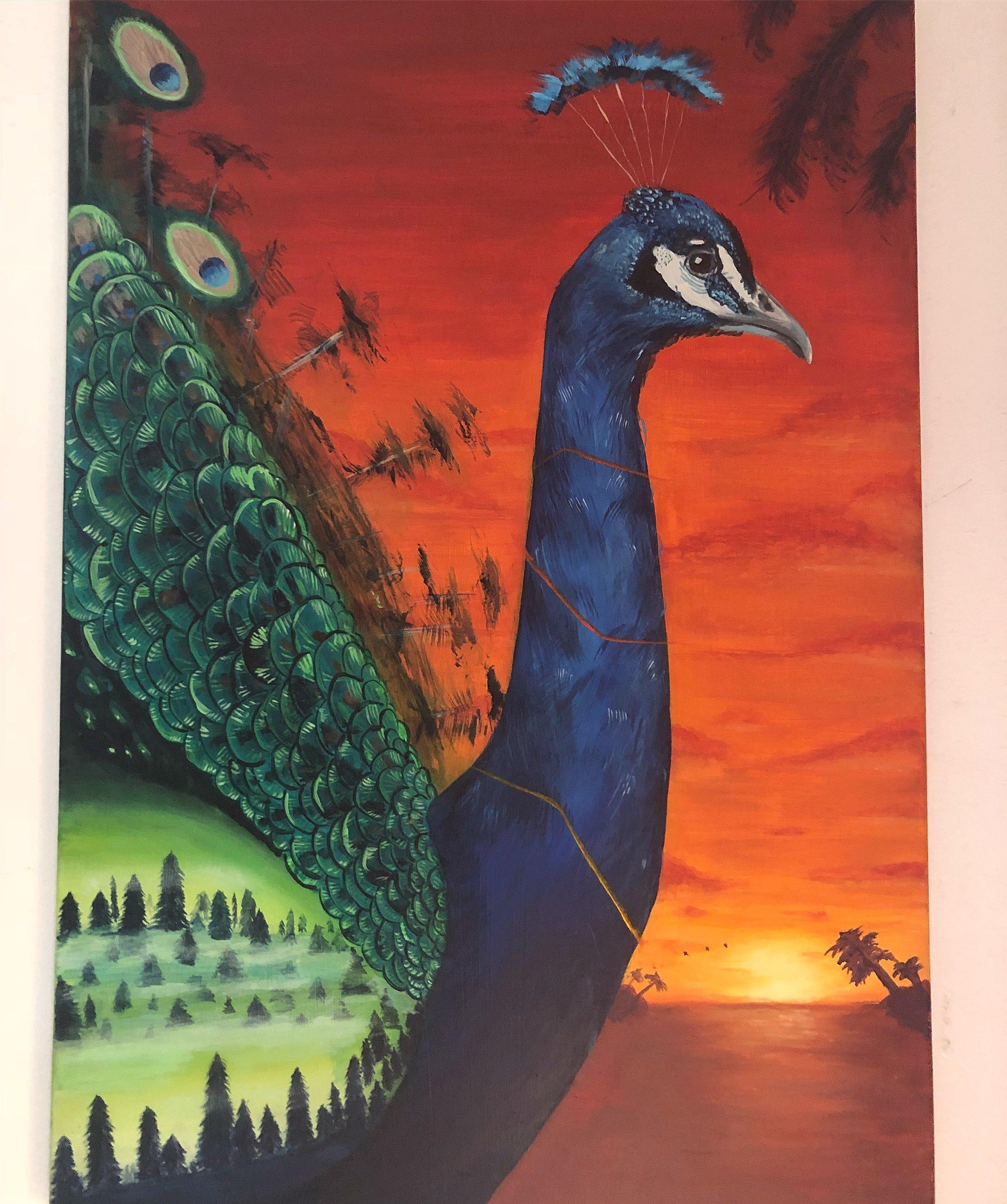 peacocksway
