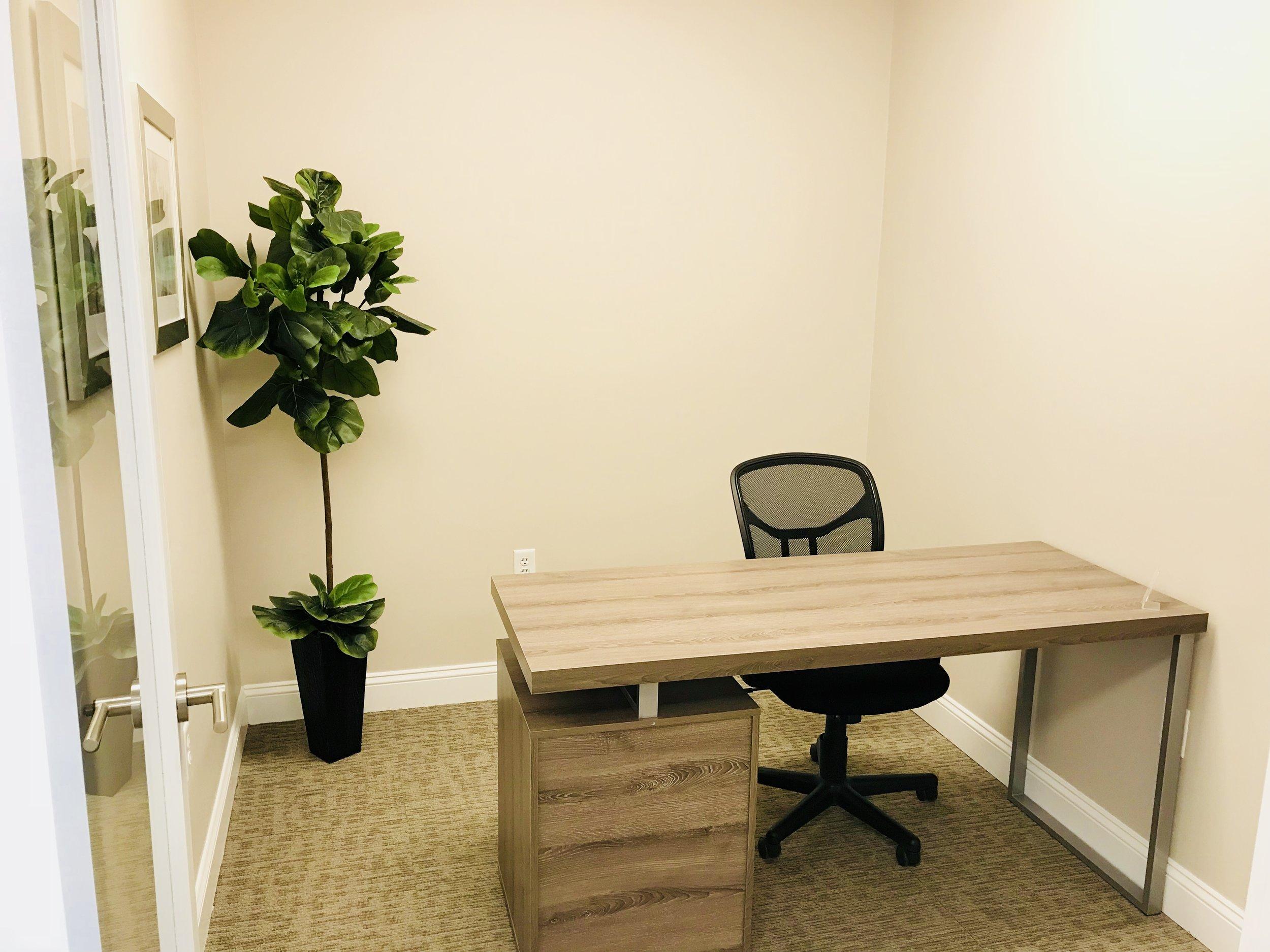 Single Office.jpg
