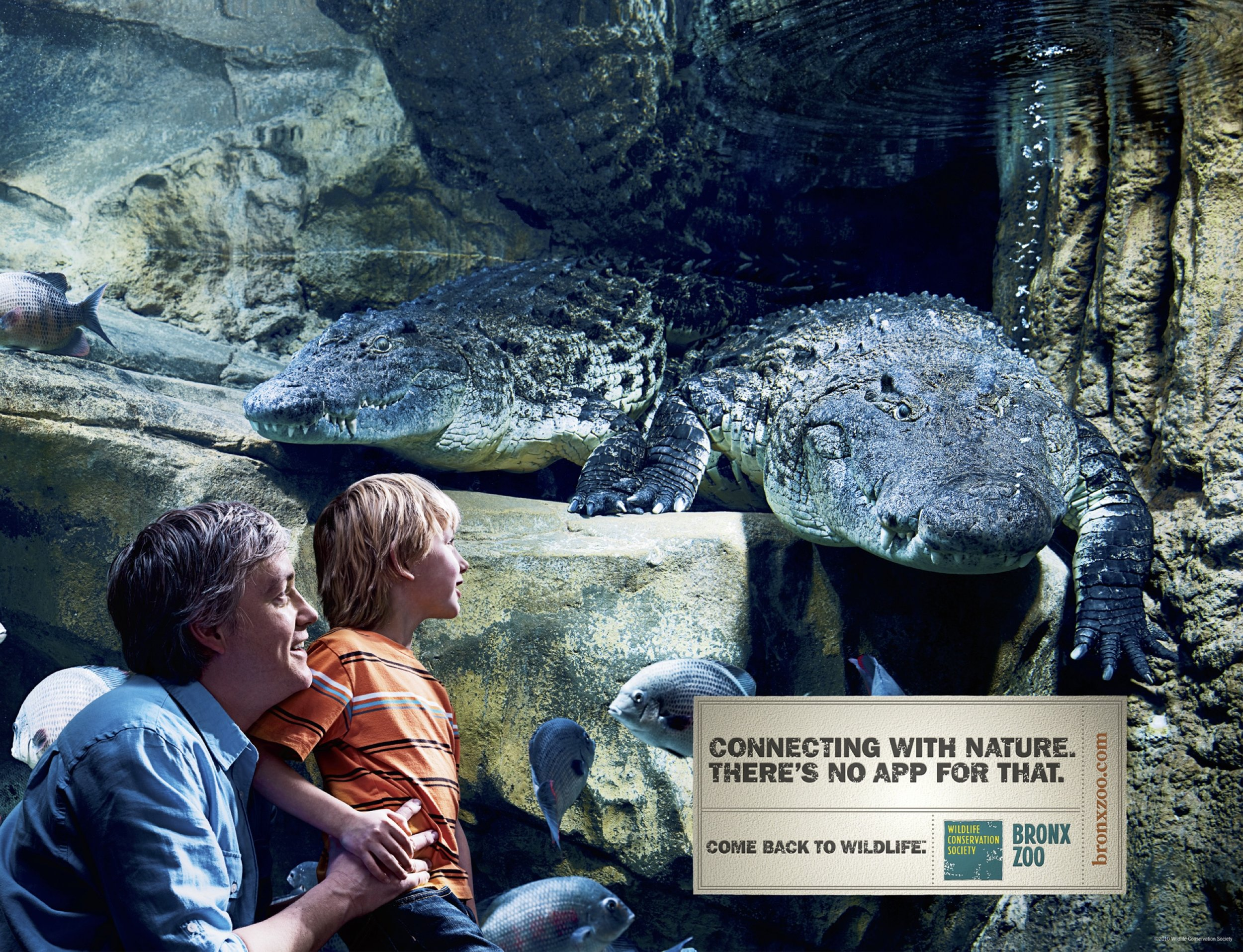 Multimedia ad campaign for Bronx Zoo by OMIH creative agency