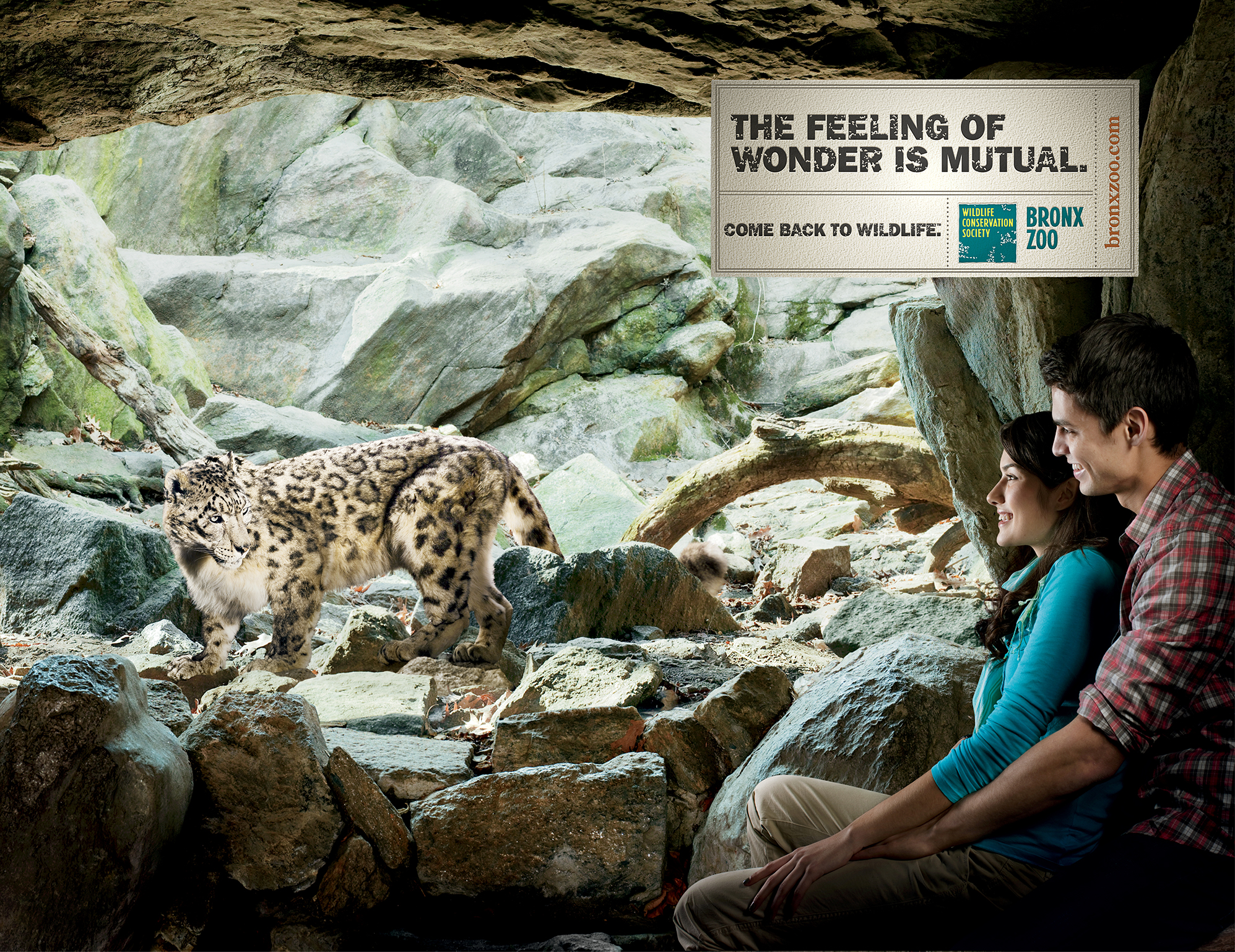 """Print ad design for Bronx Zoo""""Come back to wildlife"""" ad campaign for Bronx Zoo"""