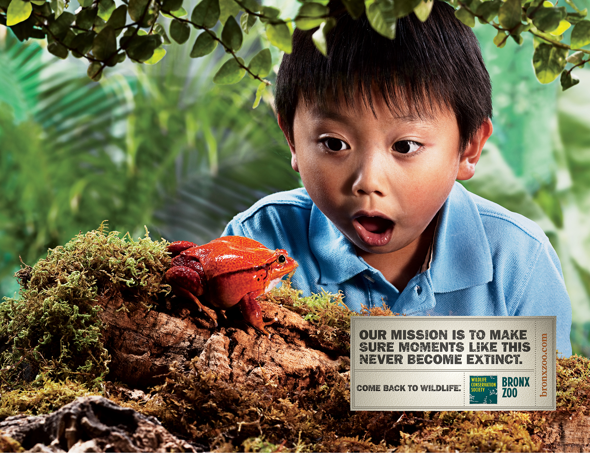 """Bronx Zoo ad with young boy and frog - """"Our mission is to make sure moments like this never become extinct"""""""