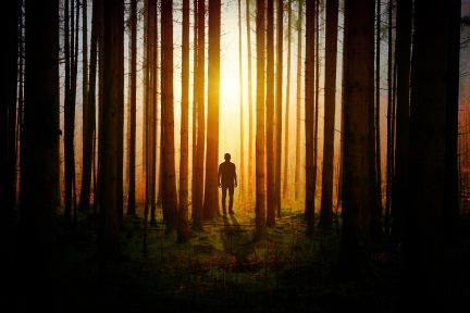 Man in woods facing shadow backlit with sunset in background.jpg
