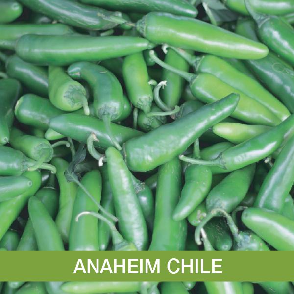 Anaheim Chile