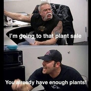 I've never identified with a meme more than this one 🌱 Happy fucking Friday, y'all!