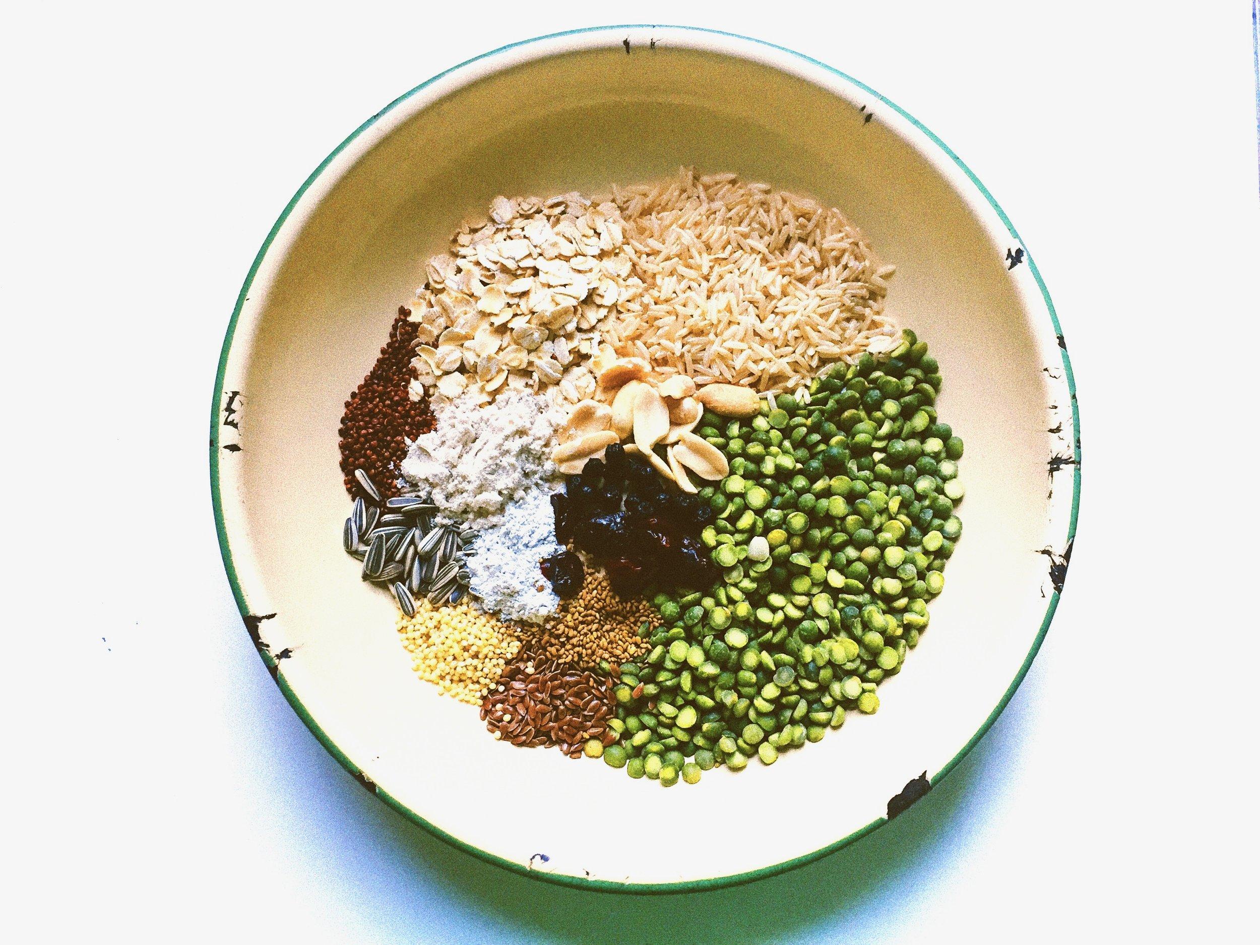 vegan dog food.jpg