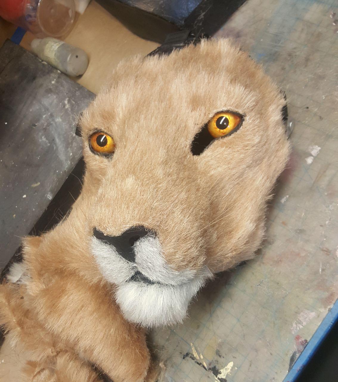 lion2018-12-12.jpg