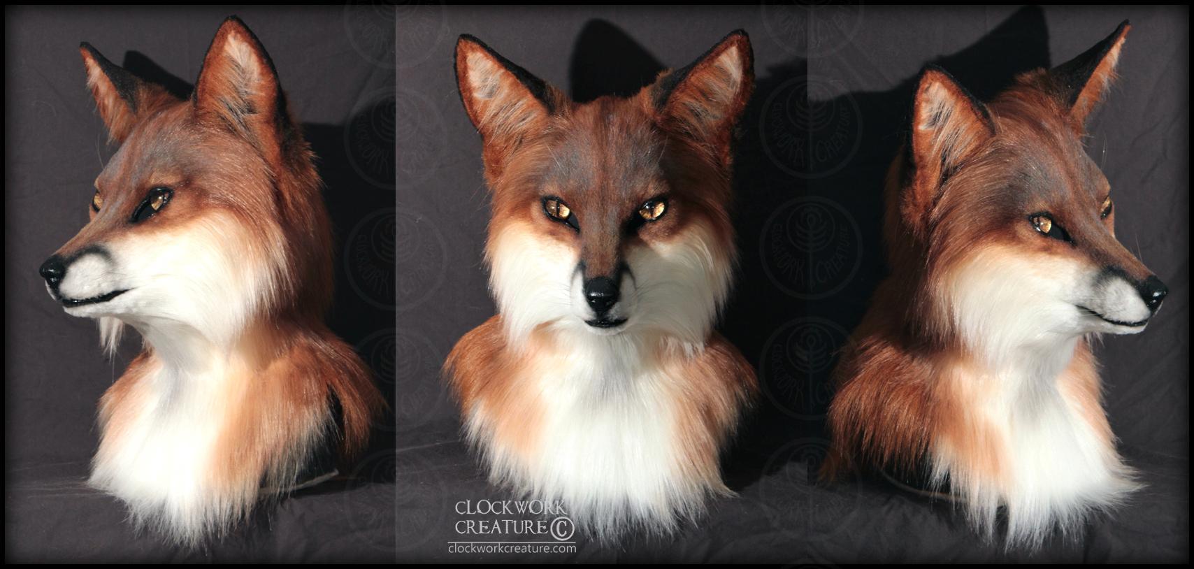 insomniac_fox.jpg