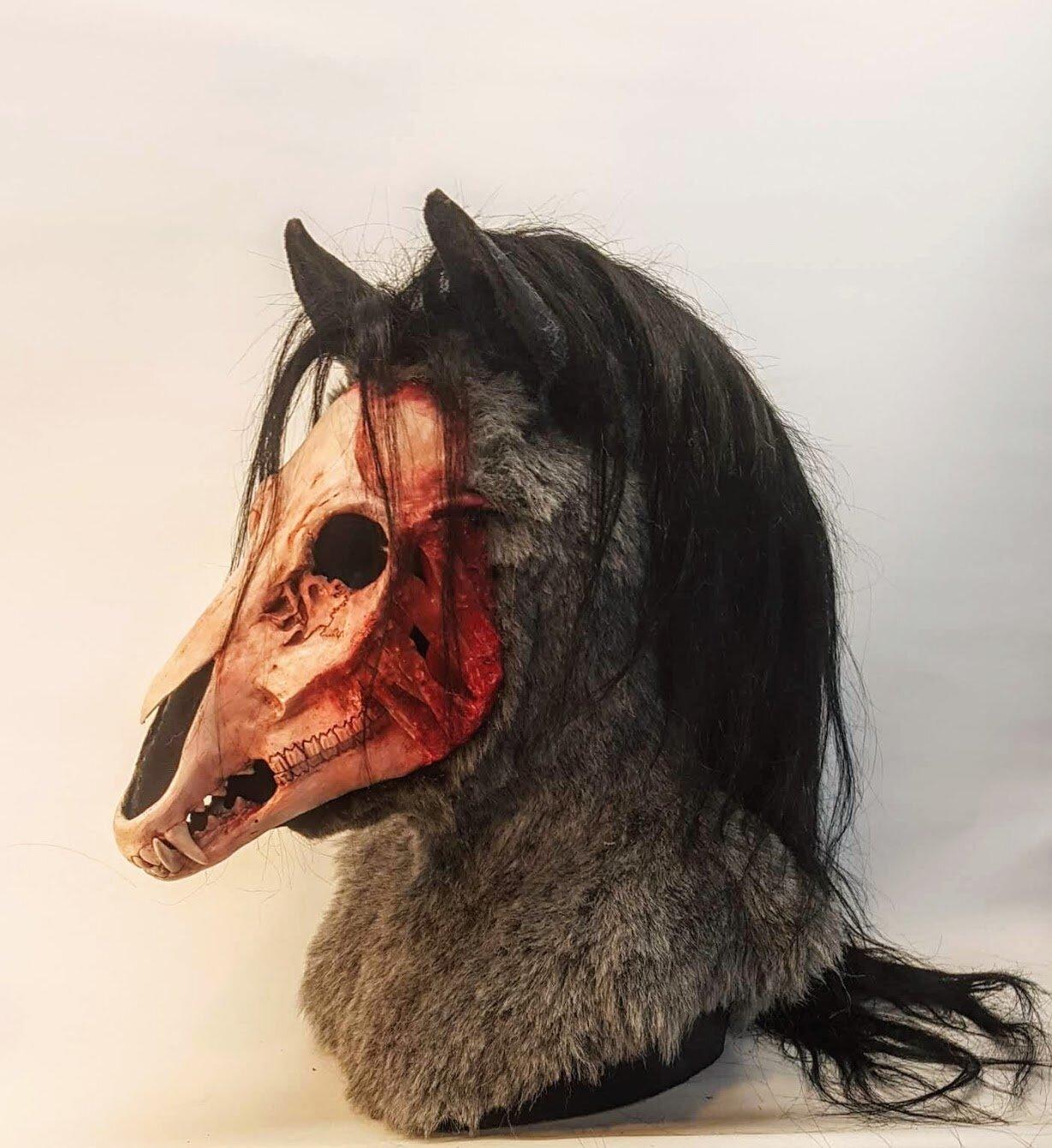 msa_horse2.jpg