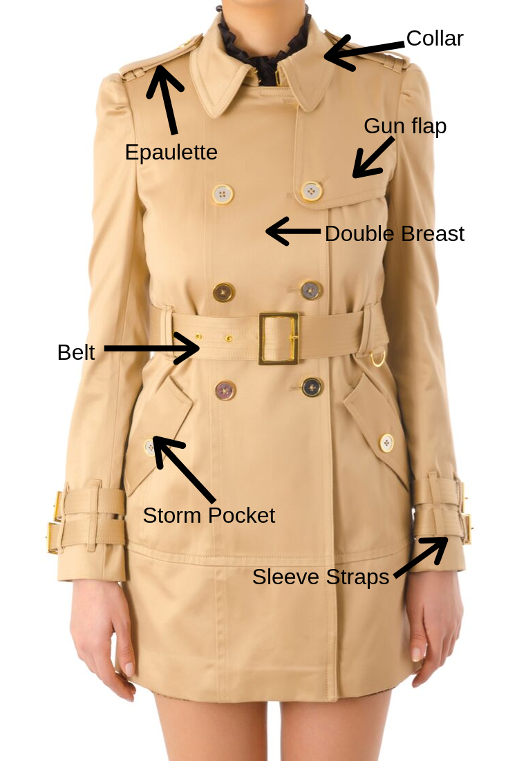 Trench-anatomy-chart-front.png