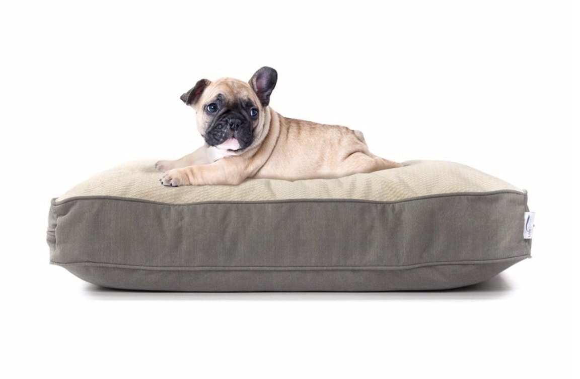 Orthopedic pet bed makes great gift if one of your favorite boys happens to be a fur baby.