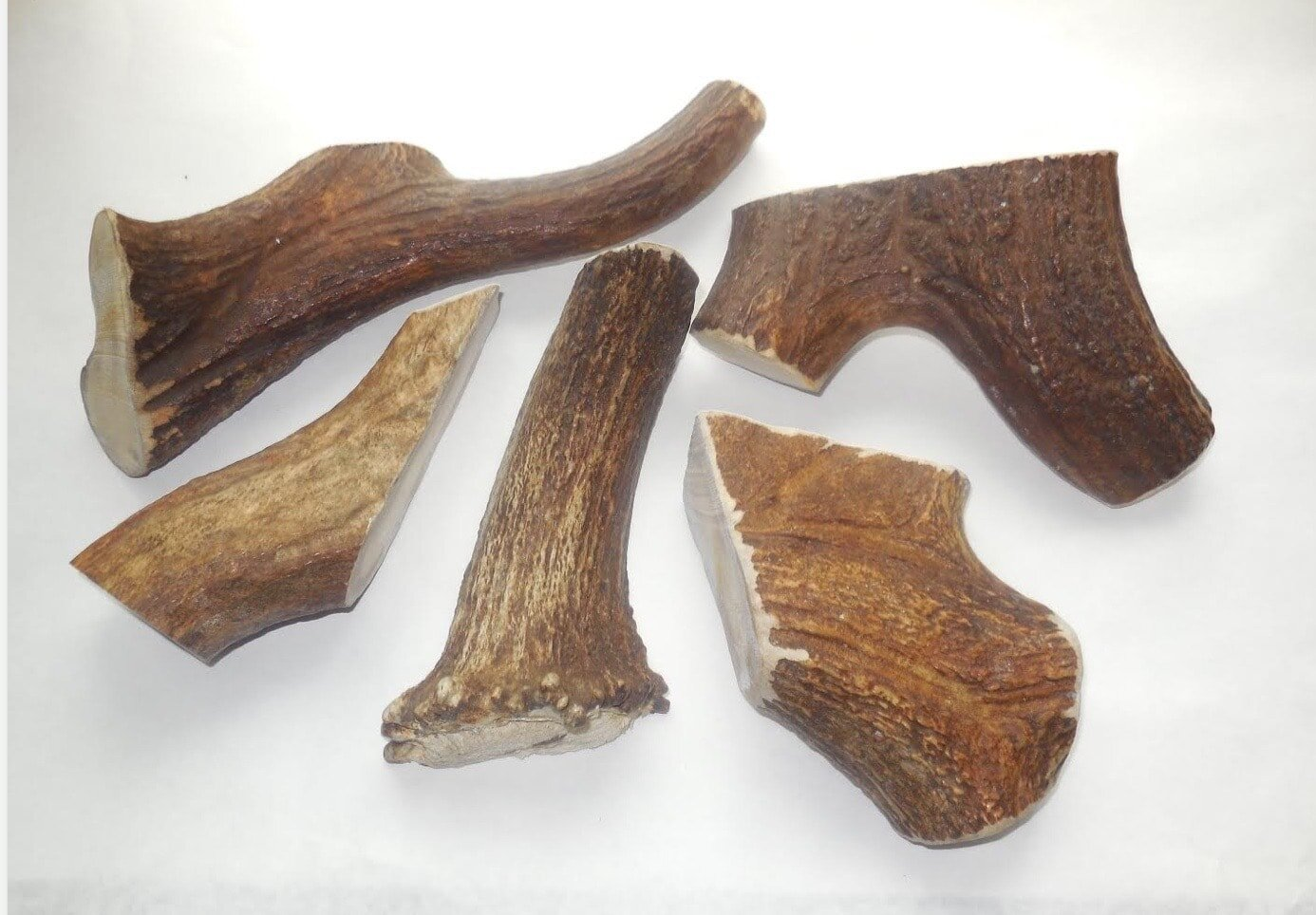 Naturally shed antlers are a great chewing treat for your pup and a safer  alternative  to rawhide.