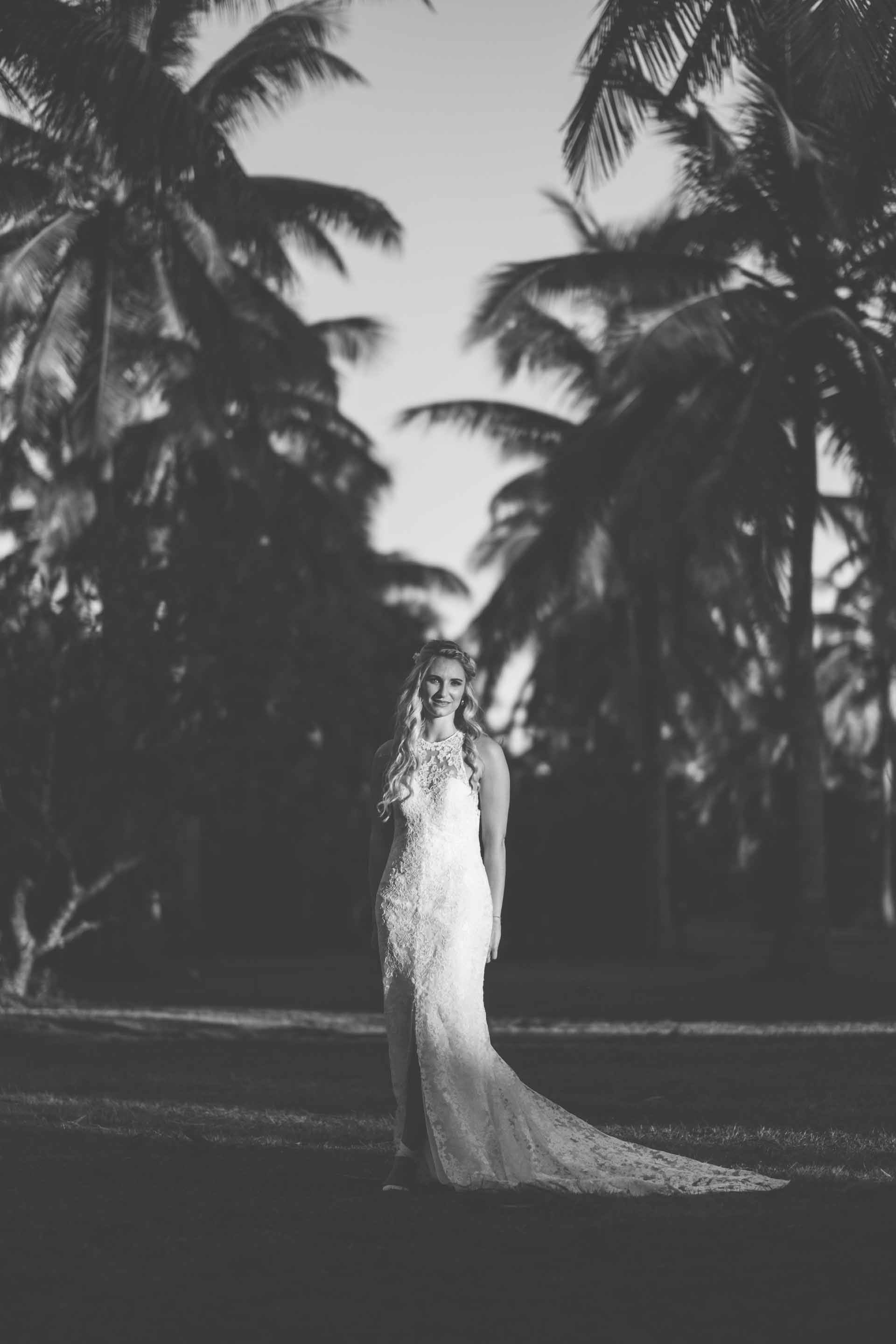 full length portrait of the bride between rows of coconut trees in black and white