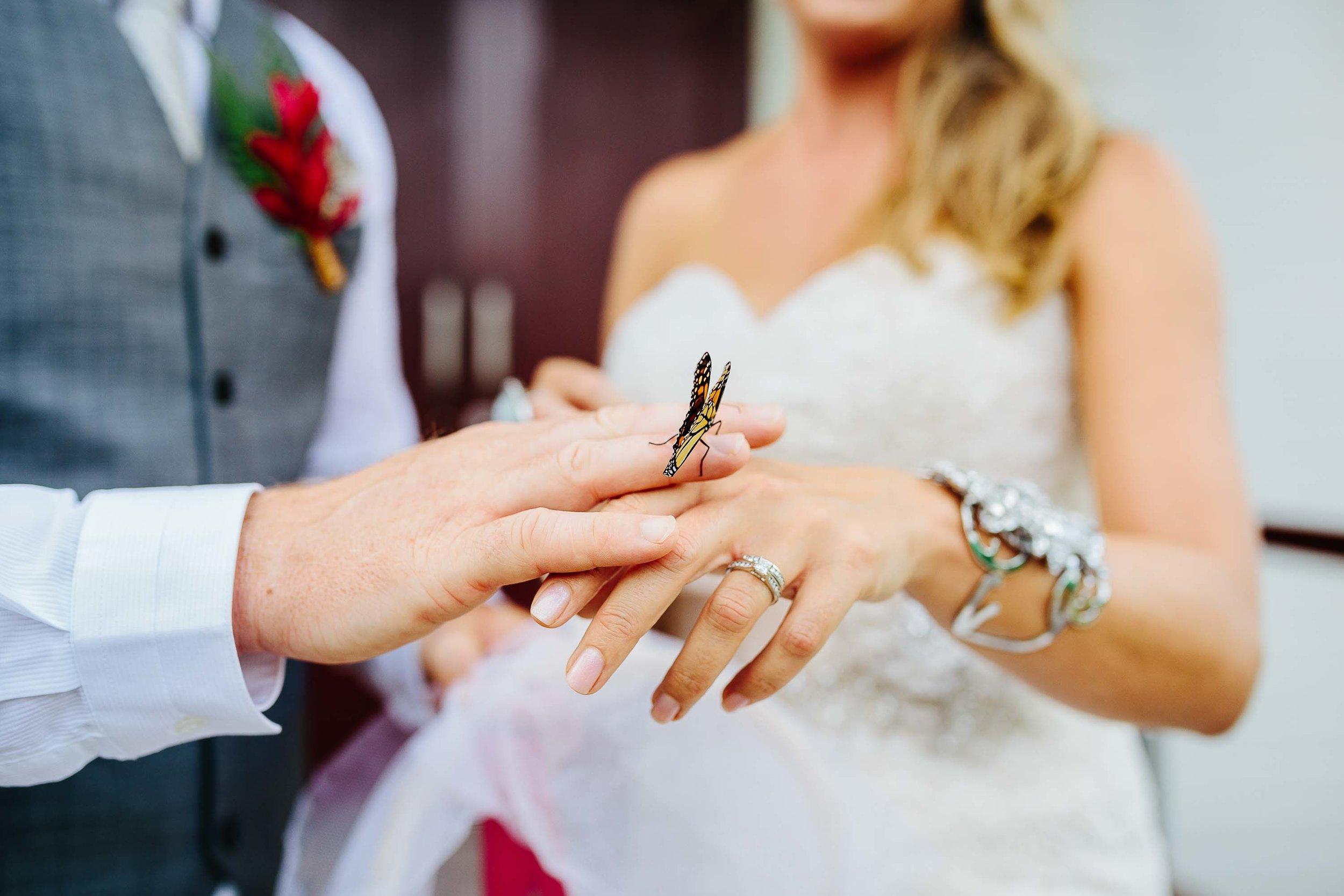 23-Annette-Andrew-Sofitel-Fiji-Wedding-32.jpg