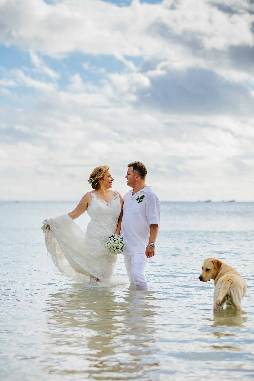 Newlyweds photobombed by Coco the resort dog