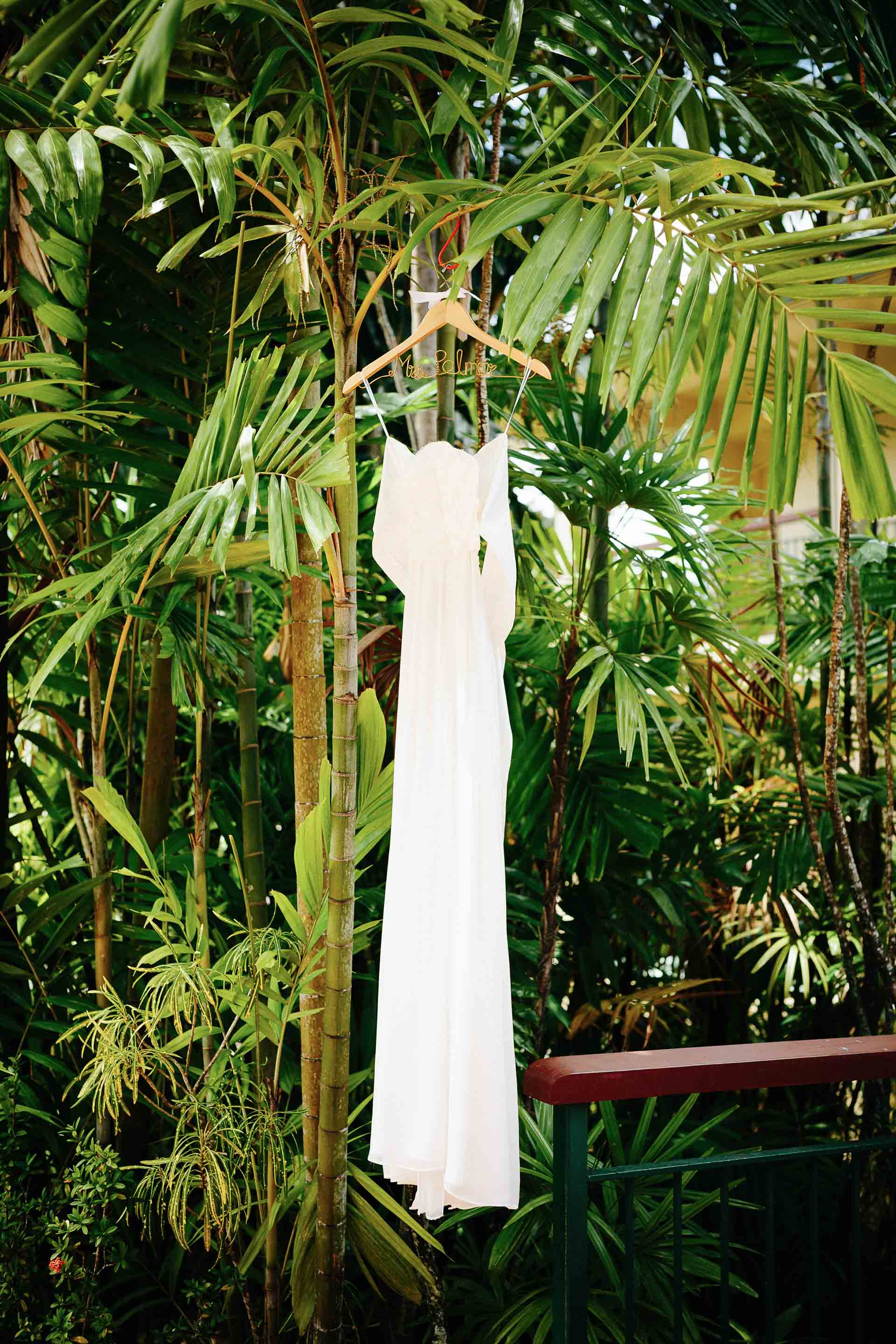 The brides dress hanging from palm fonds