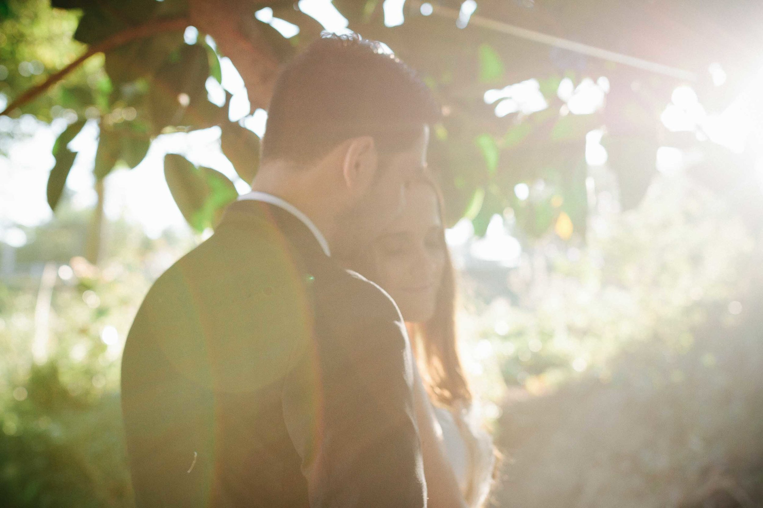 the couple under a tree hidden by a sun flare