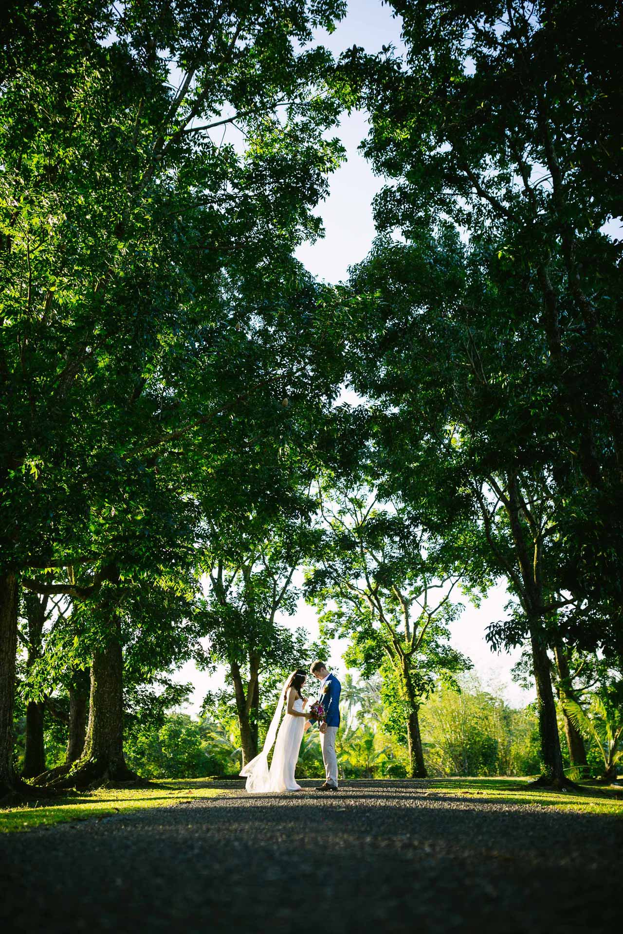 the couple at the end of a tree lined road