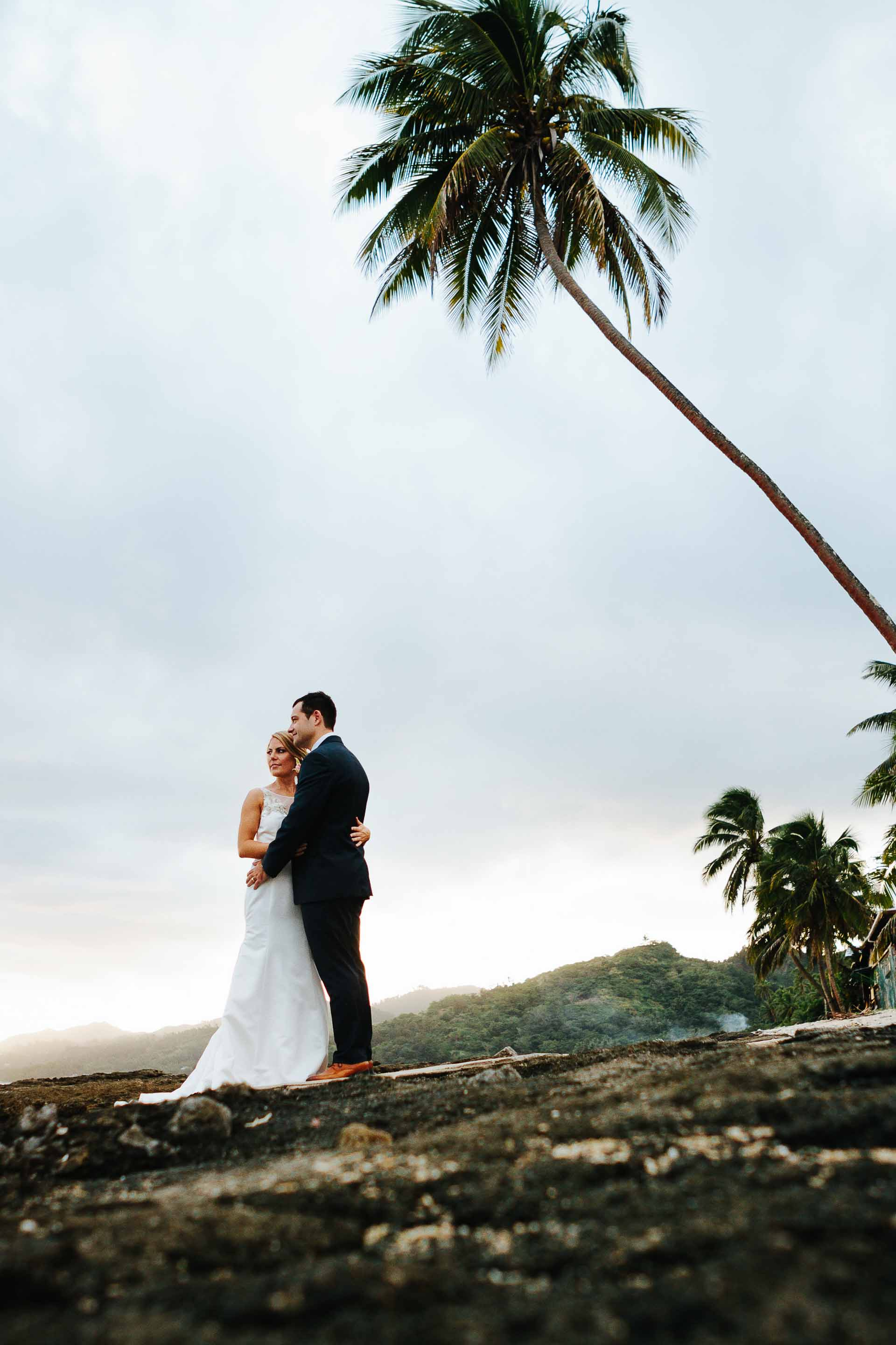 wedding couple on the beach with a coconut tree
