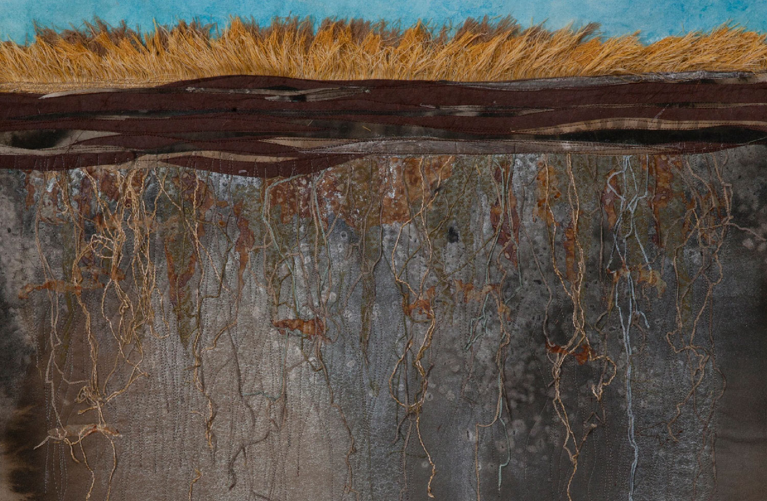 soil-horizon-roots-blue-sky-golden-grass-web-res.jpg
