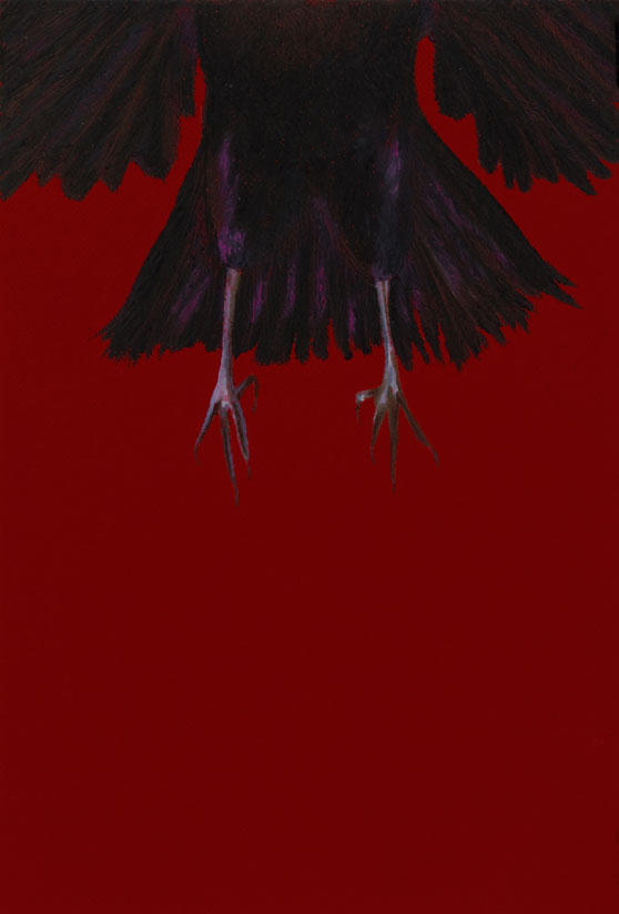 "Gone! 22""x16""drawing. The legs of a leaving crow."