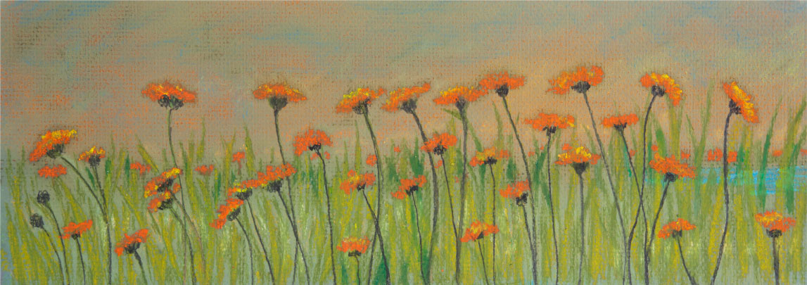 "Spring Poppies, 6""x12"" drawing.   Spring flowers appear as a riot of light and color."