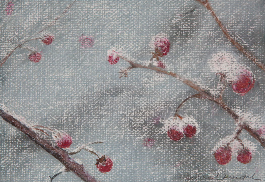 "Winter Berries. 12""x14"" drawing.   Winter plants that give us color and feed the birds that stay throughout the season."