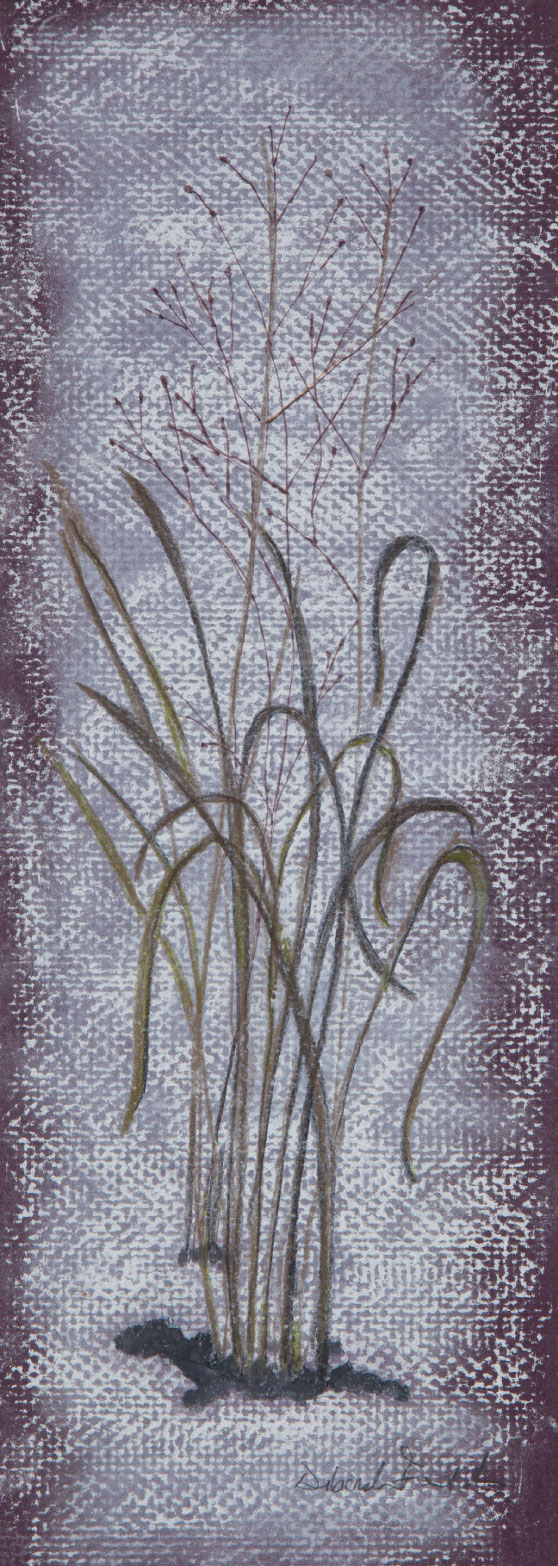 "Winter Grass, 12""x6"" drawing.  A drawing of the winter grasses."
